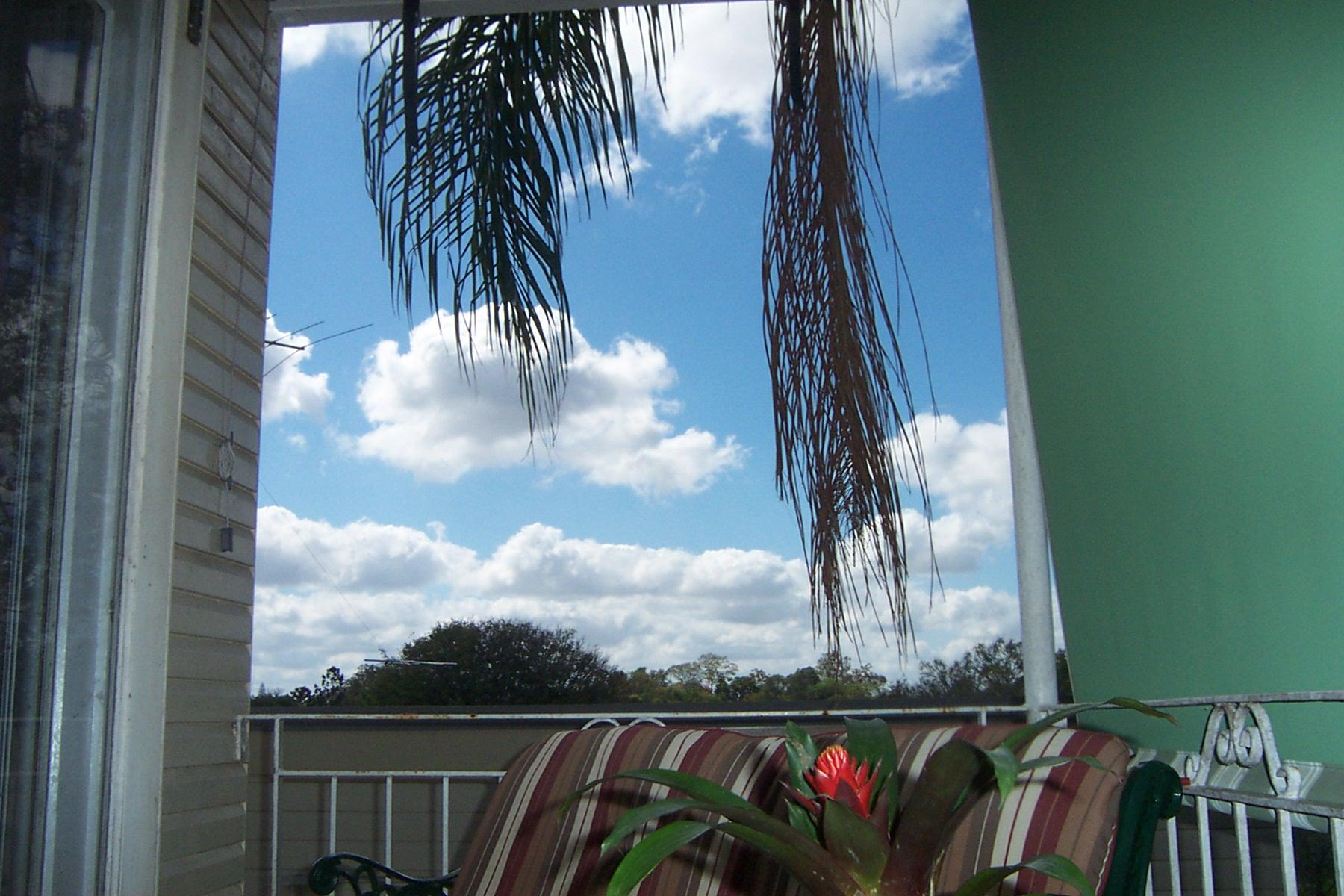 Balcony Morning 004