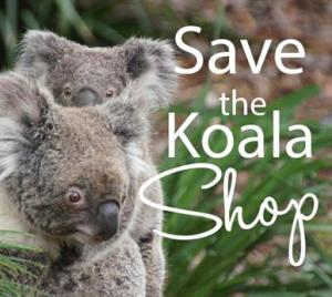 Koala Foundation Logo 04