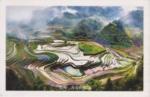 Postcard 016