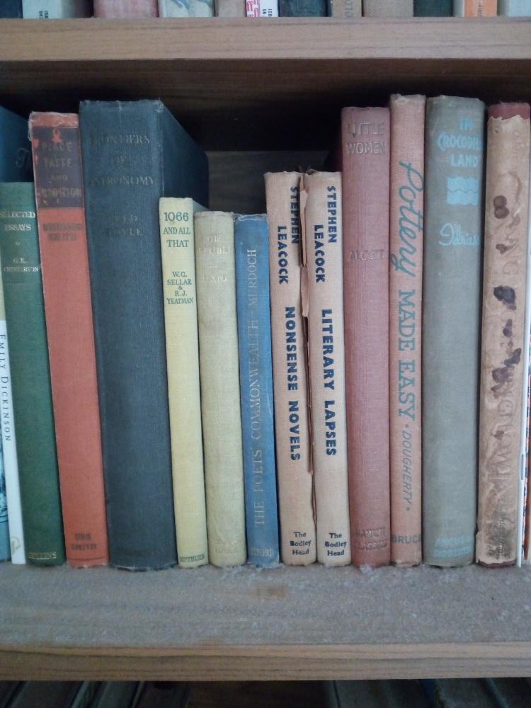 Books Bookshelf Old Volumes