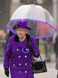Royal Umbrellas