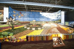 Ekka Fruit and Vegetable Display 01