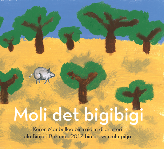 Indigenous Childrens Book Moli Det BigiBigi