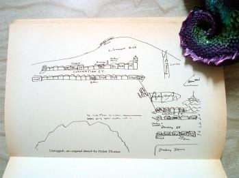 Wales Readathon Dewithon (3)