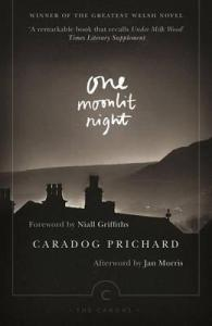 One Moonlit Night by Caradog Prichard